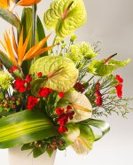 Floradelic - Buy Online Fresh Floradelic - Buy Online Fresh Cut Flowers in Bangaloreut Flowers in Bangalore