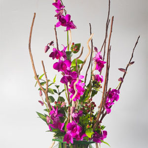 Floradelic - Buy Online Fresh Cut Flowers in Bangalore