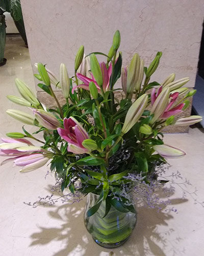Floradelic - Buy Online Fresh Cut Flowers in BangaloreFloradelic - Buy Online Fresh Cut Flowers in Bangalore